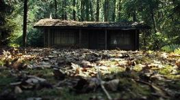 The-Cabin-in-the-Woods_cd