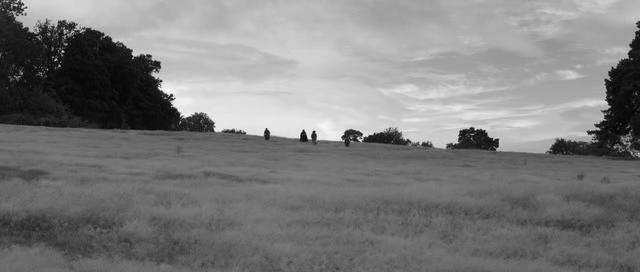 A Field in England 3