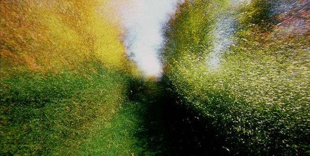 alexandre-larose-brouillard-passage-14 La internacional impresionista