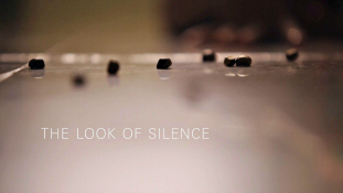 2014 - The Look of Silence (Joshua Oppenheimer, 2014 , Dinamarca)cd