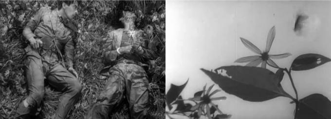 Collage Akira Kurosawa 6