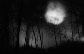 La noche del demonio cine divergente