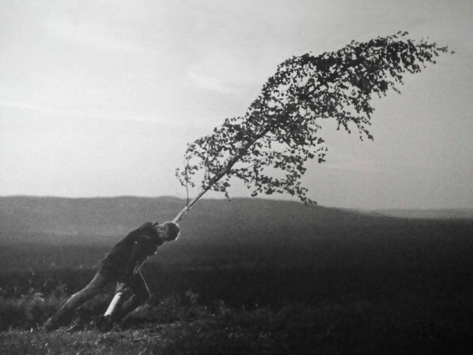 La edad media Bergman