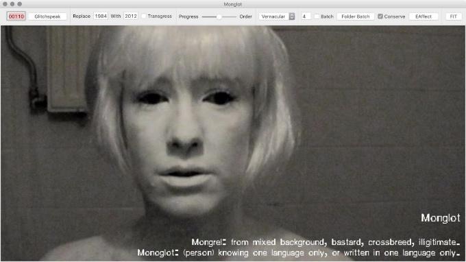 Monglot 2011