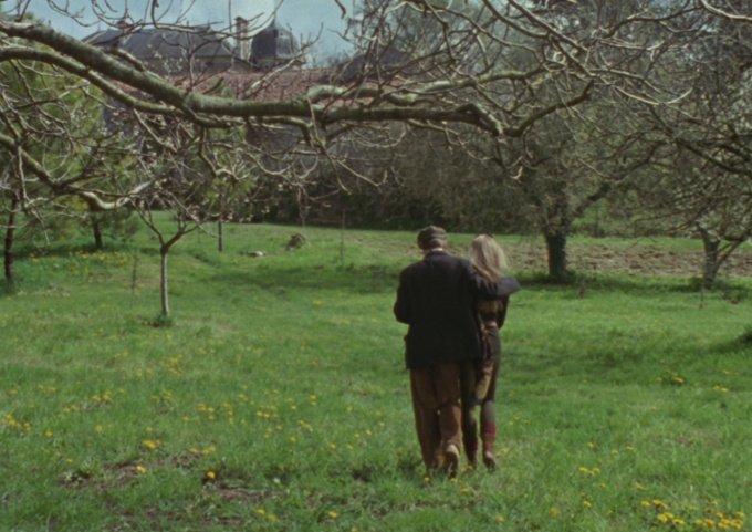 El árbol, el alcalde y la mediateca 2